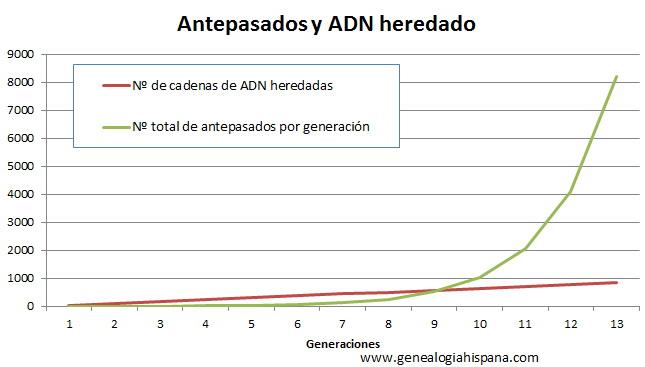 Diversidad de antepasados y de ADN recibido